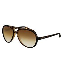 Cats 5000 shiny havana sunglasses