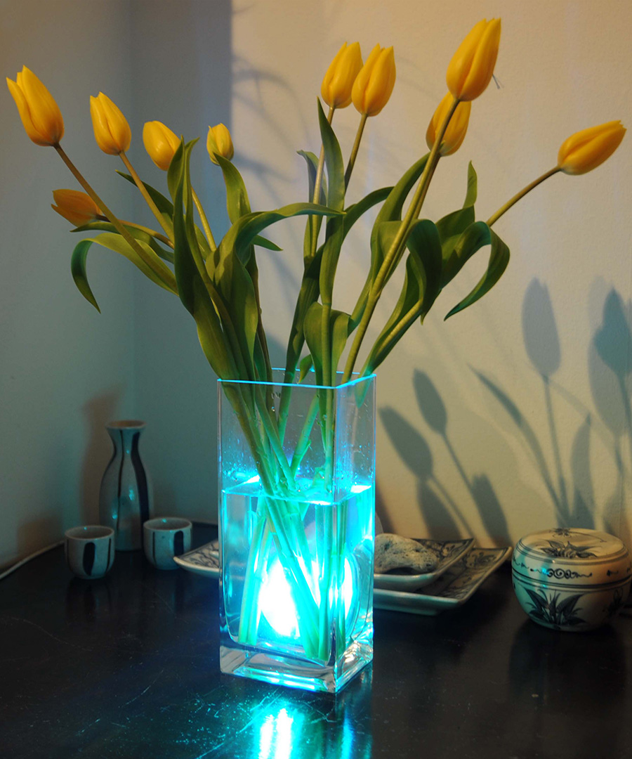 Set The Mood For Everything: Discount Aqua Mood Light