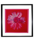 Daisy framed print Sale - Andy Warhol Sale