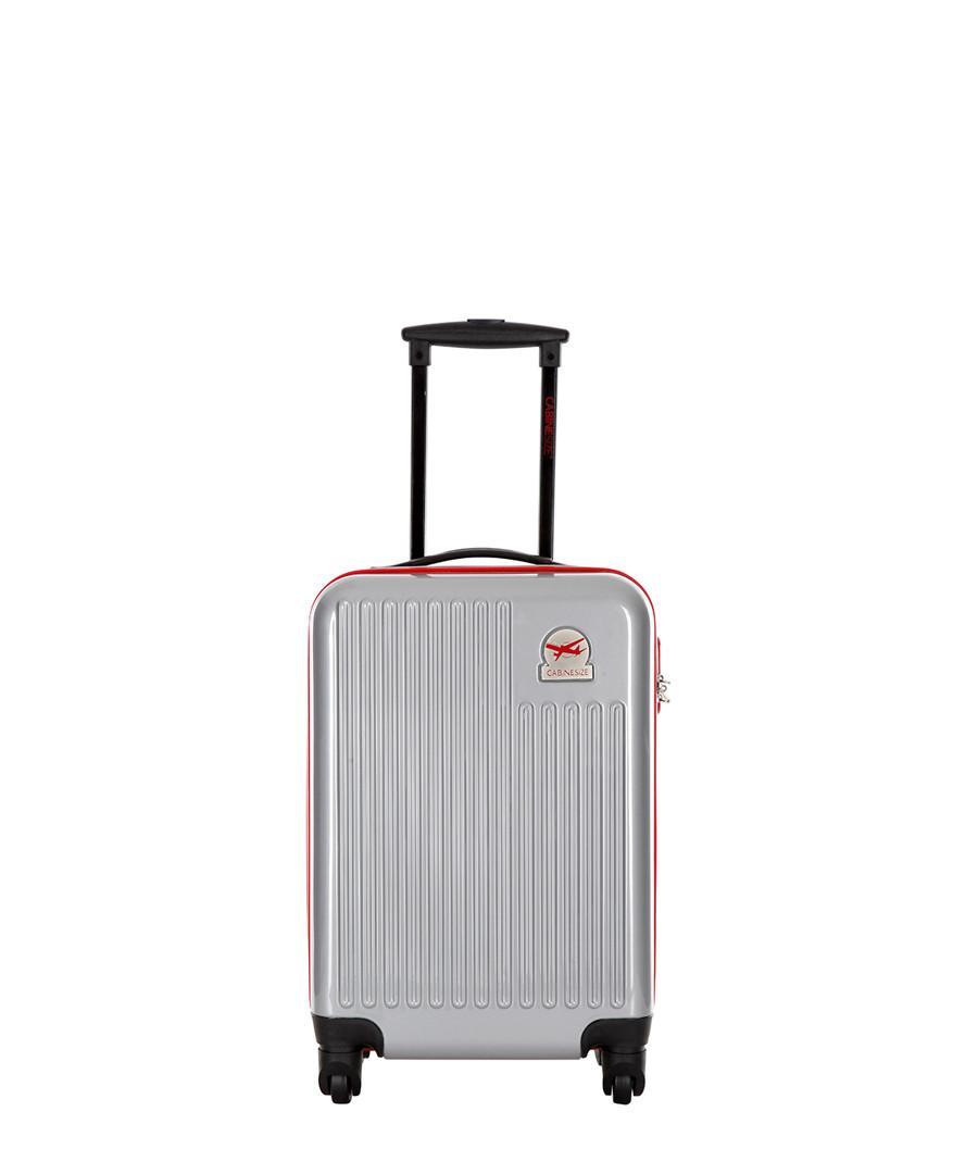 Blessington grey spinner suitcase 48cm Sale - travel one