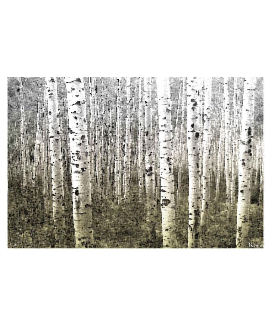 Aspen Highlands canvas print 91 x 61cm  Sale - parvez taj