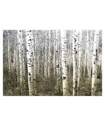 Aspen Highlands canvas print 91 x 61cm
