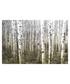 Aspen Highlands canvas print 91 x 61cm  Sale - parvez taj Sale