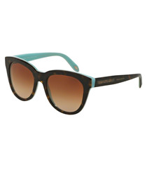 Tortoiseshell & aqua sunglasses