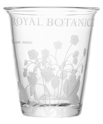 Kew clear glass vase