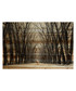 Tree Path pine wood print Sale - parvez taj Sale