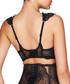 Black striped mesh push up bra Sale - Pleasure State - Couture Sale