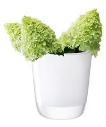 Otto white glass vase 27cm