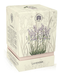 Lavender gift box candle