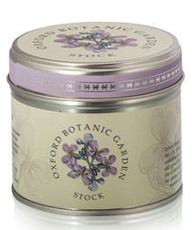 Stock tin candle