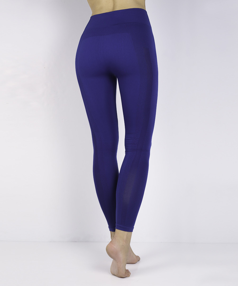 06385012f5af2 ... Women's Blue seamless mesh leggings Sale - KISAIYA ...