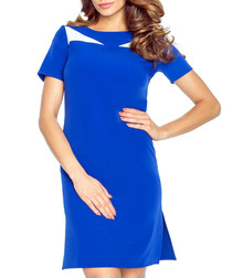 Blue & white short sleeve mini dress