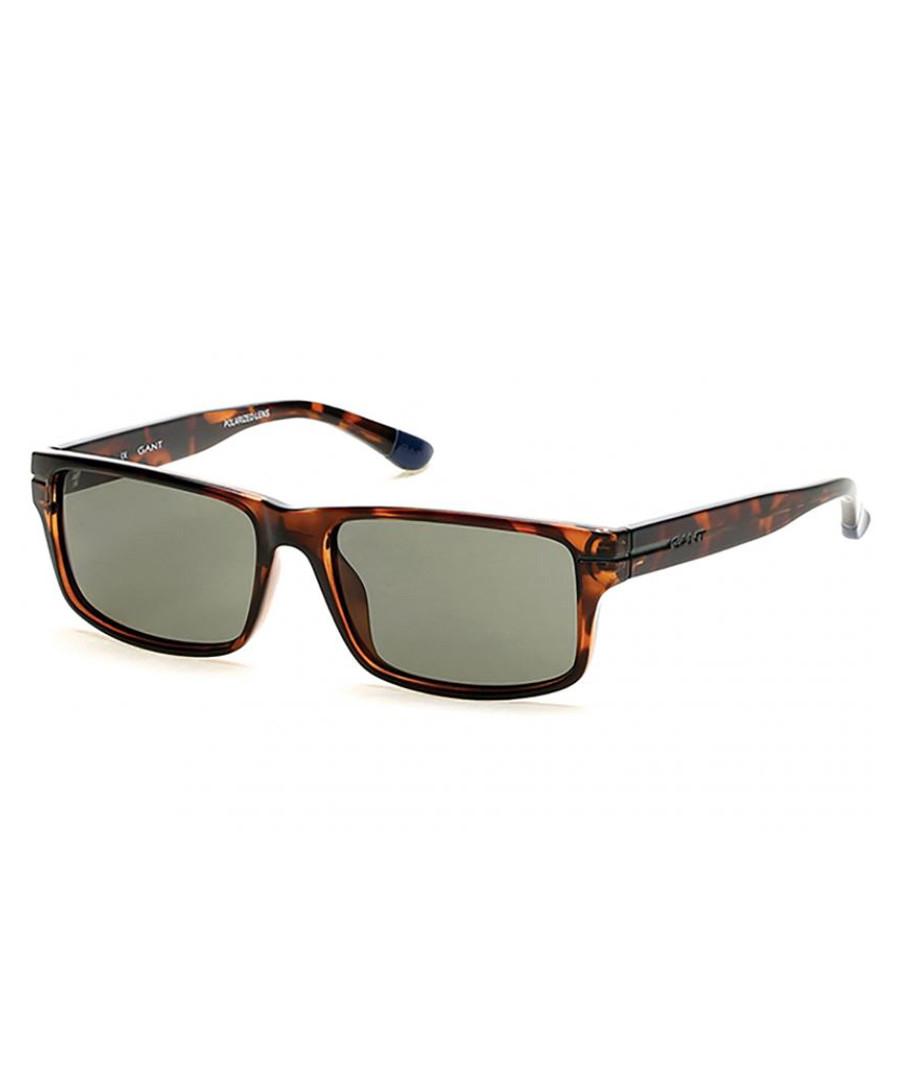 Havana & green lens sunglasses Sale - gant