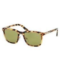 Men's Havana sunglasses
