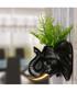 Elephant black & gold pot Sale - Walpus Sale
