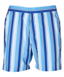 Blue stripe mid swimming shorts
