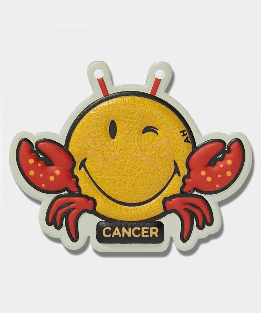 Cancer Wink mustard leather sticker Sale - anya hindmarch
