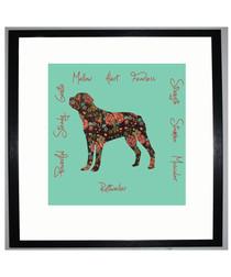 Rottweiler I framed print 25.4cm