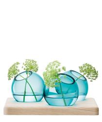 4pc blue axis vases & wood base set
