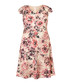 Joselyn pale pink floral dress Sale - phase eight Sale
