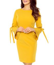 Honey bell sleeve mini dress