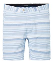 Blue & white cotton blend stripe shorts
