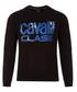 Navy pure cotton strip logo jumper Sale - cavalli class Sale