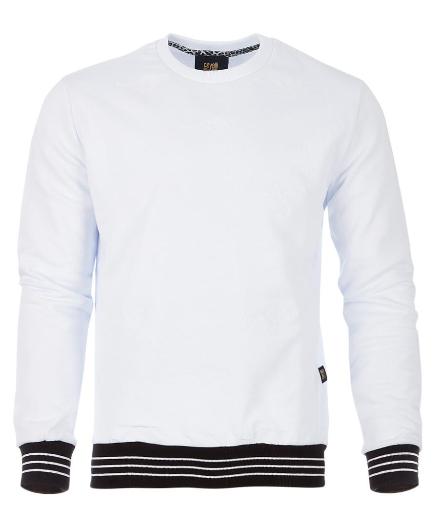 white pure cotton jumper Sale - Cavalli Class