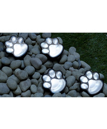 4pc Globrite paw print solar lights