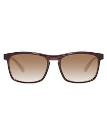 Brown & gold-tone sunglasses