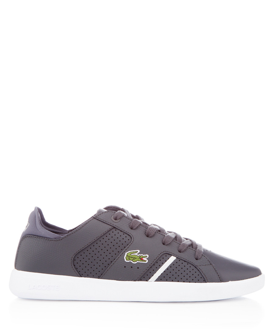 Novas grey leather sneakers Sale - lacoste