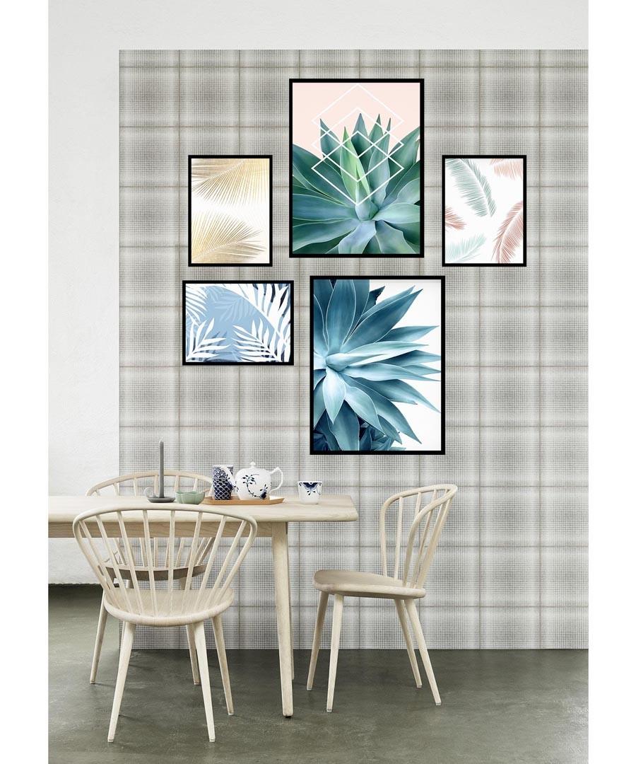 5pc Agave wall art set Sale - modacanvas