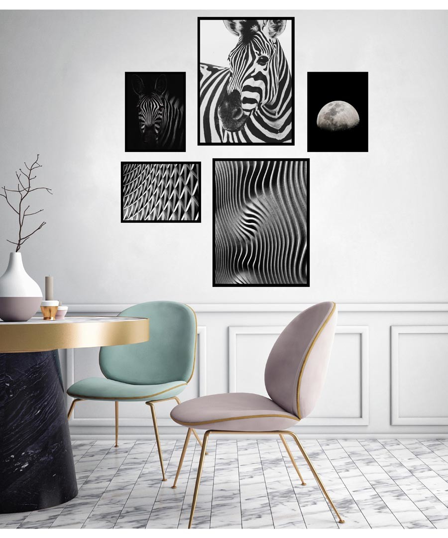 5pc Zebra wall art set Sale - modacanvas