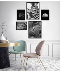 5pc Zebra wall art set