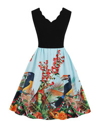 Black scallop edge bird print dress