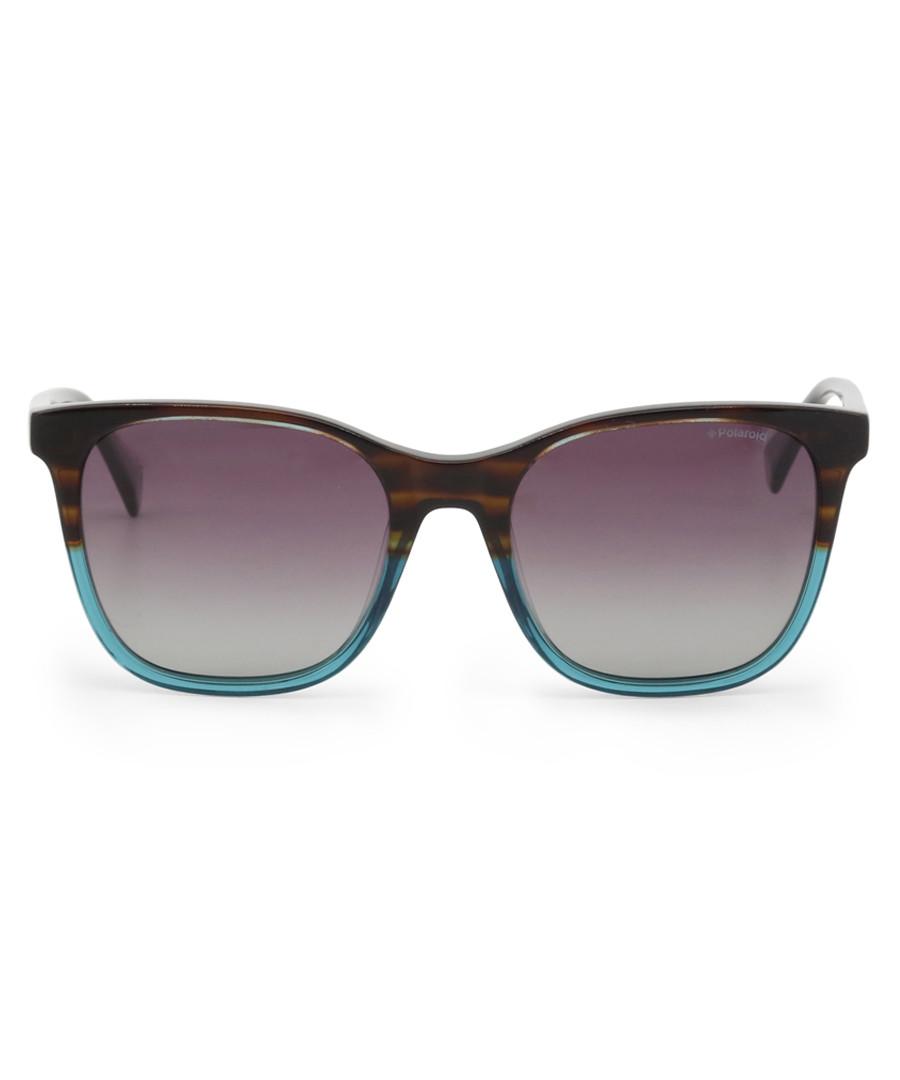 blue & brown D-frame sunglasses Sale - polaroid