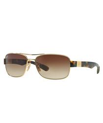 Gold-tone & Havana gradient sunglasses
