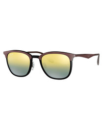 Brown gunmetal sunglasses